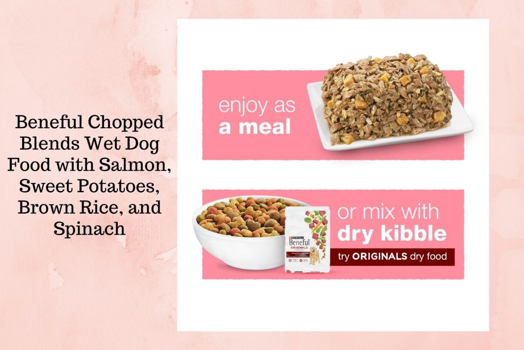 Beneful Chopped Blends Wet Dog Food with Salmon Sweet Potatoes Brown Rice and Spinach