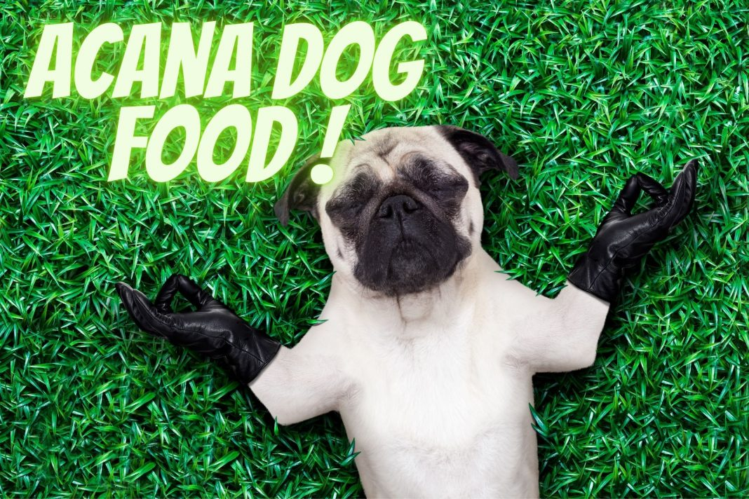 Which Acana Dog Food is Best for My Dog Top Selection