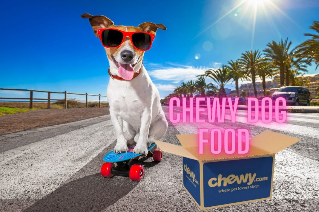 chewy dog foods